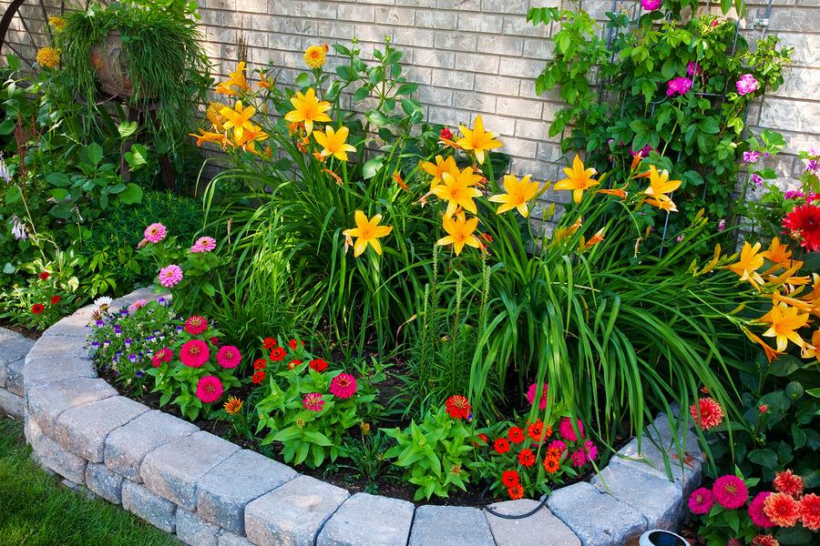 Steinbeet Anlegen Im Garten Tipps Und Gestaltungsideen Anleitung